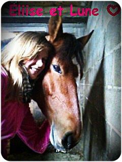 L'équitation...Un Passion !