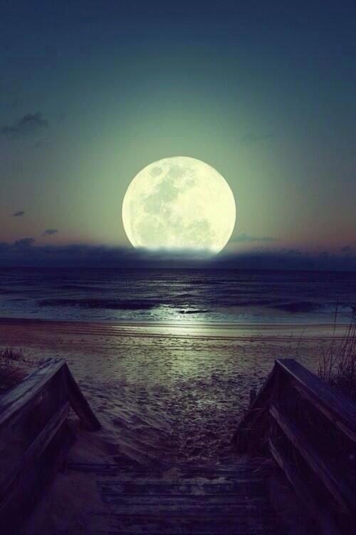 Contempler la lune peut nous aider à réfléchir et faire les bons choix ♥