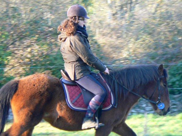 """""""De ce spectacle émouvant, qui force le c½ur et remue les entrailles, se dégage comme l'essence de toute harmonie. Ils sont deux, ne font qu'un, dans un même mouvement, une même légèreté. dans un équilibre où se répondent la retenue et l'abandon, la souplesse et la fermeté, la puissance et la délicatesse. C'est une danse où le cheval n'a plus sa tête. Un esprit l'habite. Où le cavalier n'a plus de jambes, il va au pas, il trotte, il galope. C'est presque une musique que rythme les sabots tintant, comme des claquettes."""""""