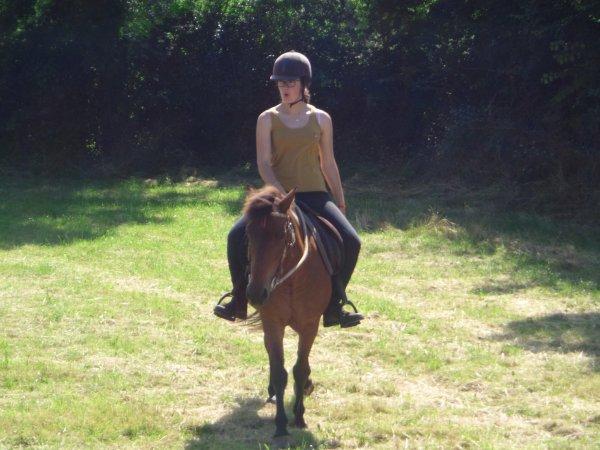 """""""Les chevaux sont des créatures mystérieuses, ou divines.""""  sagesse indienne"""