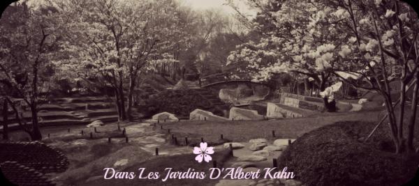 Dans les jardins d 39 albert kahn bienvenue sur le - Les jardins albert kahn ...