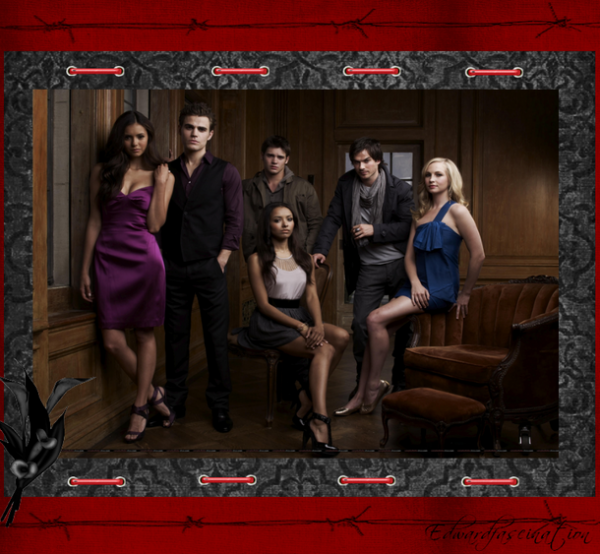 the vampire diaries pour Ludi