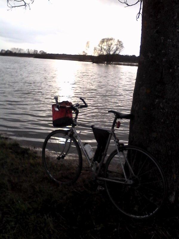 activité réduite janvier 650 kms