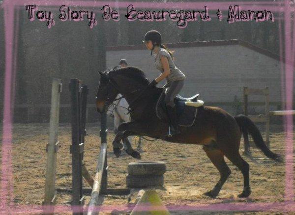 Toy Story De Beauregard  ♥