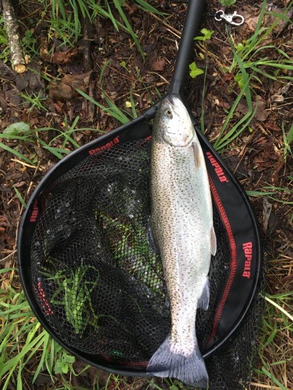 Super pêche ce matin