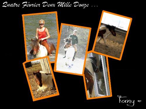 """""""Un cheval libre & indomptable, qui ne connaît pas la pluie; sous le soleil sa robe lui tel un repère, une lumière dans le désert infini. Cheval du désert, né du vent et de la terre; tu représente la liberté ... Celle de rêver ! """""""