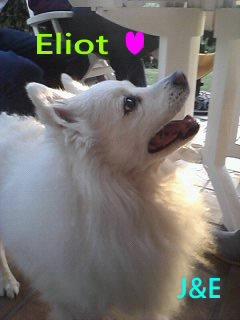 Eliot ♥ Je m'y étais préparée,mais sans toi ; c'est dure ... (u)