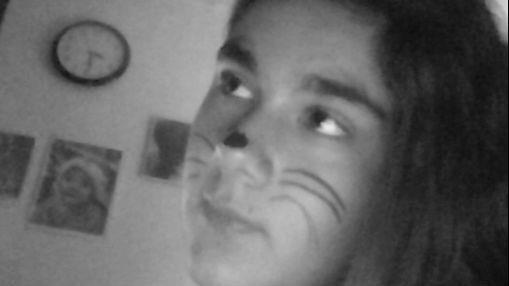 Miaou C Moi