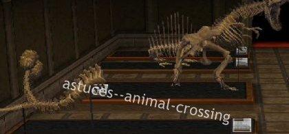Liste des fossiles