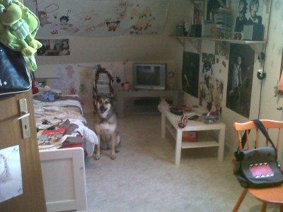 ~Ma chambre~