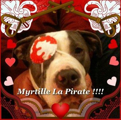 la pirate !!!