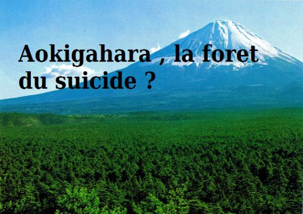 Aokigahara , La foret du suicide ?