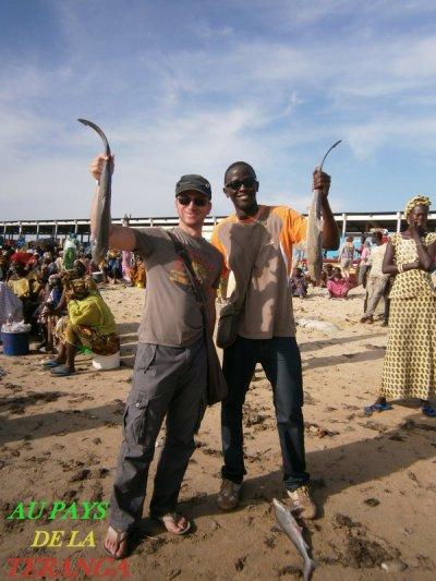 Royal baobab somone EXCURSIONS AU SENEGAL