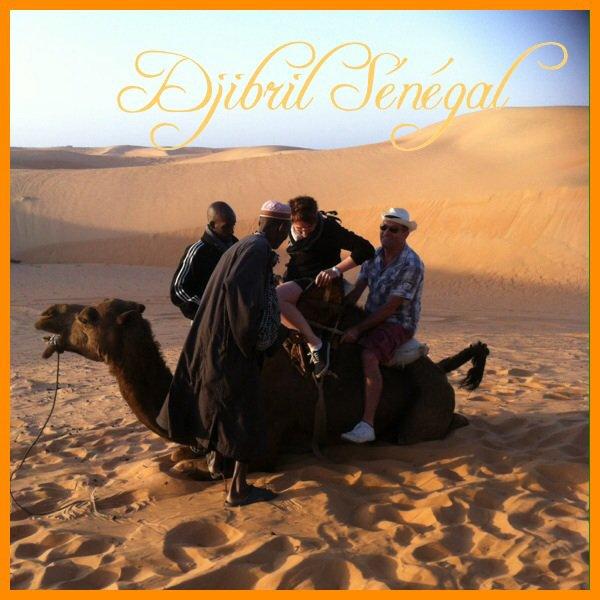 Balade en dromadaire  sur les dunes de lompoul. Merci pour votre confiance et nous serons la présent pour vous faire aimer notre beau pays.