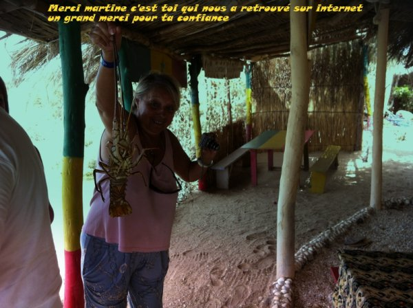 Hotel royal baobab somone excursions avis