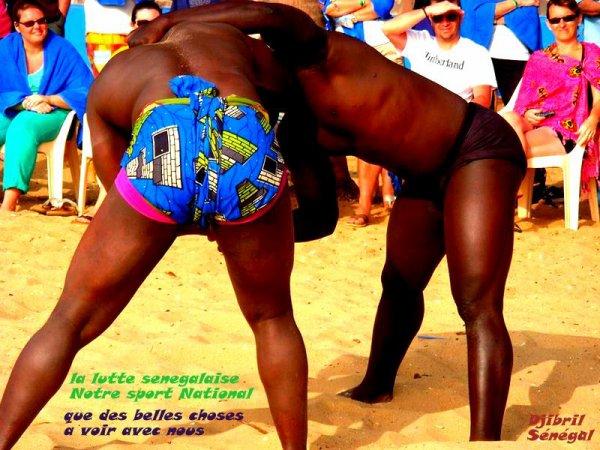 Vous voulez assister a un combat de lutte Sénégalaise ?????