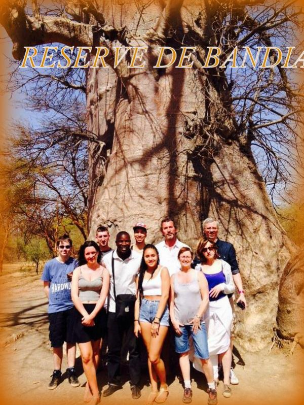 (Sénégal écursions) visiter le Sénégal au depart de la somone royal baobab, saly et Nianing
