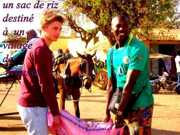 Sénégal Excursions vous propose des excursions au Départ du Royal baobab Somone et au Tama lodge Mbour Sénégal,Merci de nous avoir donné votre confiance