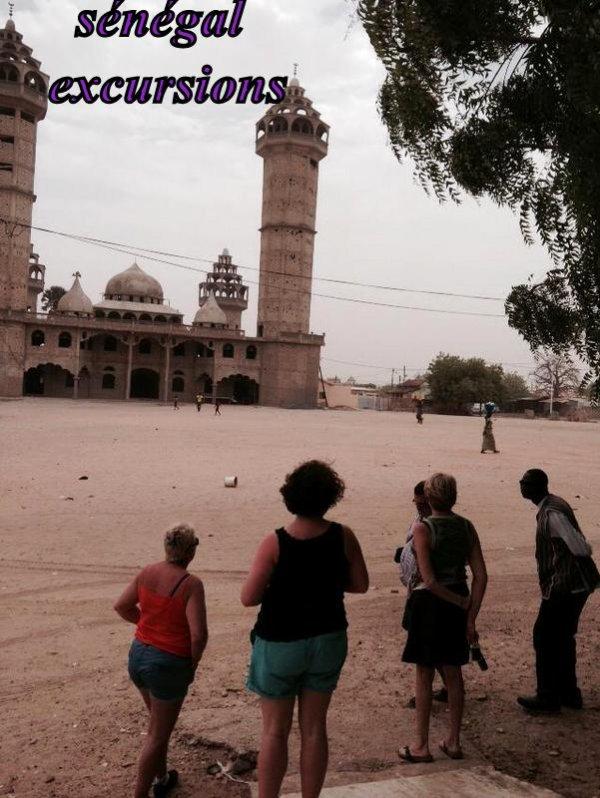 Les Meilleurs excursions au départ de saly ,Somone, Nianing,Avec Sénégal Excursions EXCUR