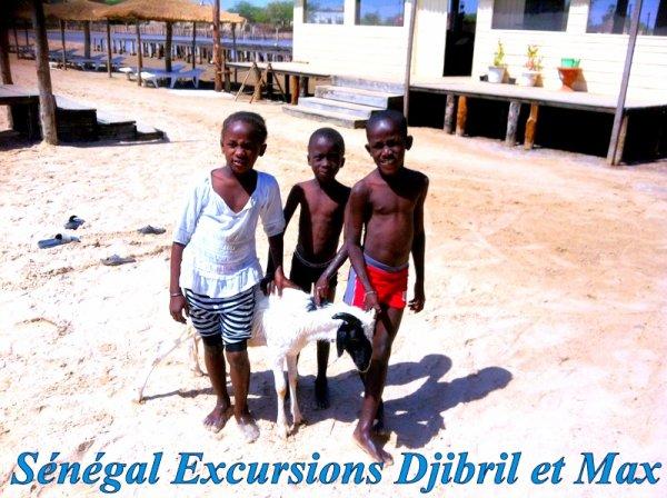 EXCURSIONS AU SENEGAL SOMONE SALY NIANING