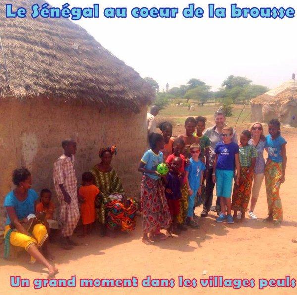 Excursies Sénégal,Partagez les meilleurs moments de vos vacances avec Sénégal excursions dans la bonne humeur
