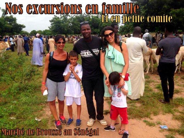 EXCURSIONS AU ROYAL BAOBAB SOMONE EN FAMILLE ET DANS LES MEILEURS CONDITIONS