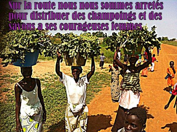 LES MEILLEURS EXCURSIONS AU SENEGAL ROYAL BAOBAB DECAMERON SOMONE SENEGAL