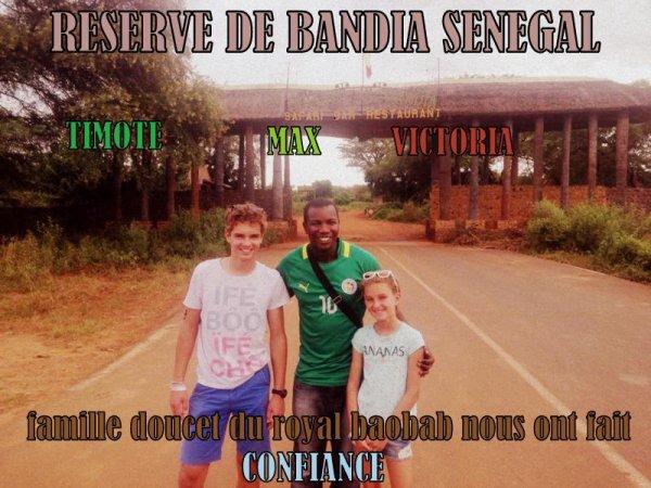 RESERVE DE BANDIA SENEGAL AVEC NOS AMIS ROYAL BAOBAB SOMONE S
