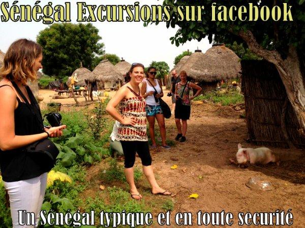 EXCURSIONS AU SENEGAL A DES TARIFS MOINS CHER QUE GRATUIT