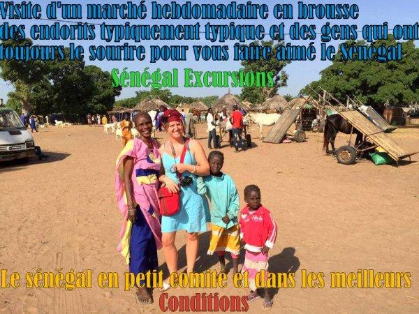 HOTEL CLUB LOOKEA ROYAL BAOBAB SENEGAL,JOURNEE DANS LE SINE ET SALOUM,LA PLAGE AU LAC ROSE, ET LA RÉSERVE DE BANDIA