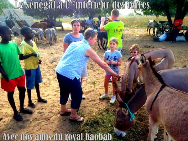 EXCURSIONS ET VISITE AU DEPART DU CLUB ROYAL BAOBAB DECAMERON SOMONE,ET ROYAL SALY SENEGAL