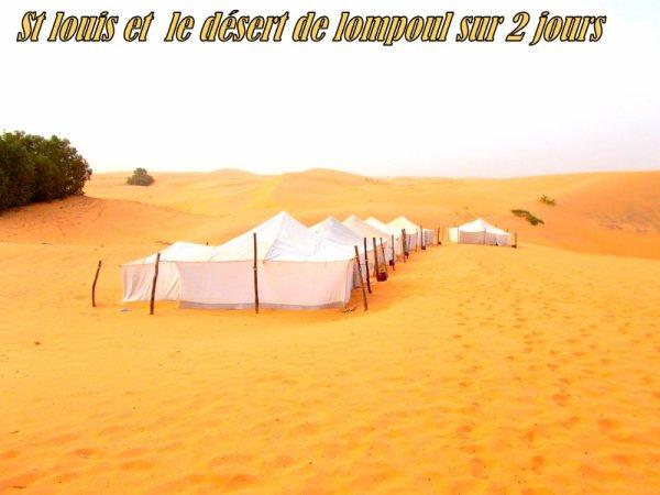 Merci a nos amis de l'africa Queen Somone Sénégal  Circuit 2 jours St louis et le Désert de lompoul