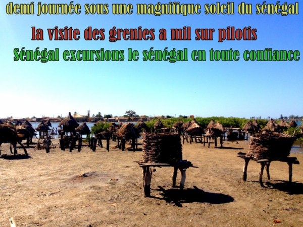 DEMI JOURNEE ILE AUX COQUILLAGES AU DEPART DU DECAMERON ROYAL BAOBAB SOMONE SENEGAL