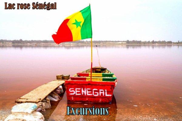 DEMI JOURNEE RÉSERVE DE BANDIA AU DÉPART DU ROYAL BAOBAB SENEGAL