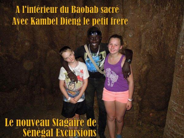 ROYAL BAOBAB SENEGAL EXCURSIONS AU DEPART DE LA SOMONE ET DE SALY