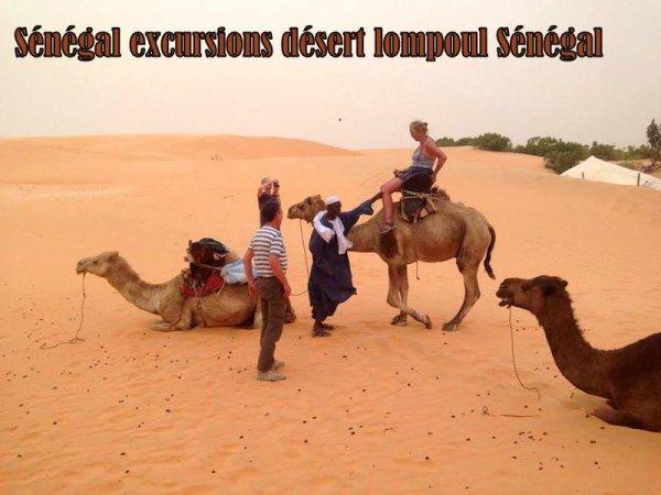 2 jours d'aventure Saint louis du Sénégal et désert de lompoul avec a nos amis de la Somone Keur Mariguen