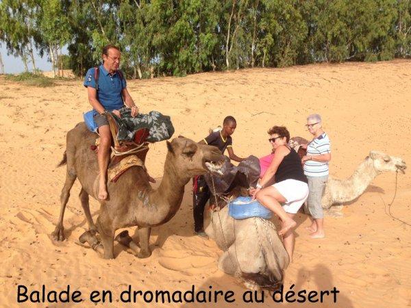 st louis et le désert de lompoul au départ du royal baobab et l'hôtel africa queen