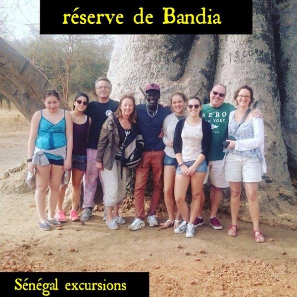 SENEGAL EXCURSIONS DEMI JOURNEE RESEVE DE BANDIA AVEC NOS AMIS DU PALM BEACH SENEGAL ET ROYAL BAOBAB SOMONE SENEGAL