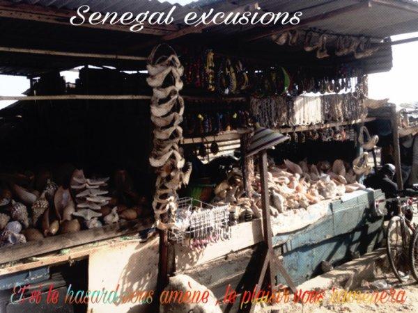 Des excursions toujours en petit comité une meilleure façon de découvrir le Sénégal autrement