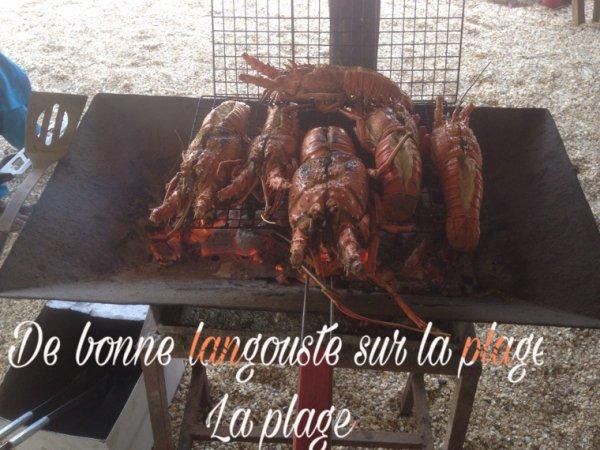 Découvrez nos déjeuners langouste sur la lagune de la somone. SENEGAL EXCURSIONS