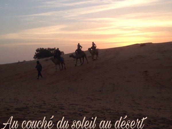 Désert de lompoul avec nos amis de warang Senegal. Merci de votre confiance.