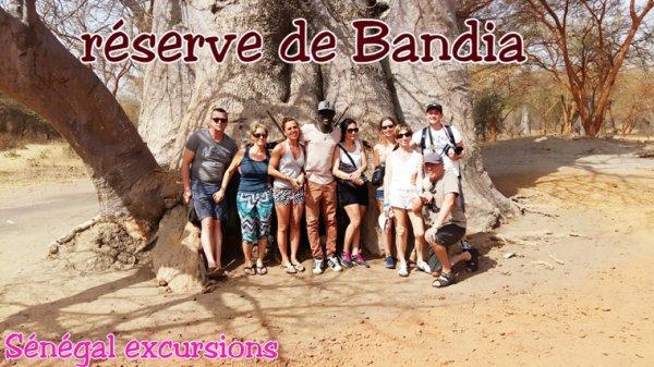Réserve de bandia au départ de l'hôtel filaos,hotel royal baobab,