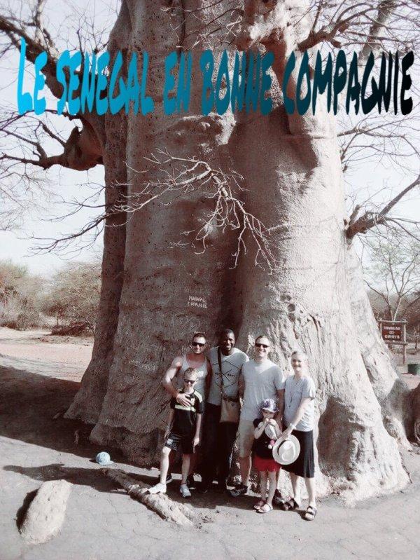 Demi brousse et visite de la réserve de Bandia avec nos amis du Palm beach Saly et royal baobab senegal