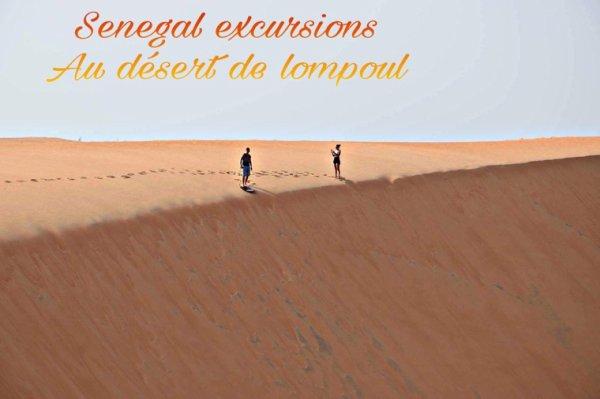 Découvrez les meilleurs excursions au départ de la résidence safari village à Saly désert de lompoul au Senegal