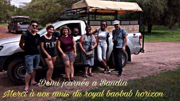 Demi journée réserve de Bandia avec nos amis de l'hôtel royam baobab horizon Somone Senegal