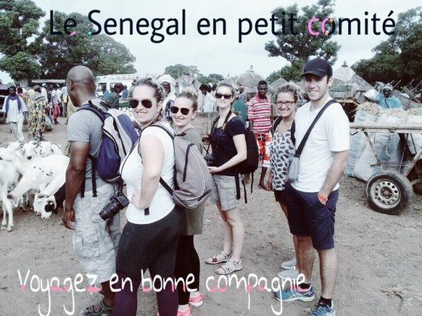 Merci à nos amis de l'hôtel royam à saly et du royal baobab horizon à la somone