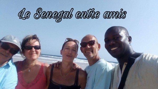 Une belle découverte de l'île de Goree et la lac rose avec nos amis d'Alsace du royal baobab Somone. Merci à nos chers hôtes de leurs confiance