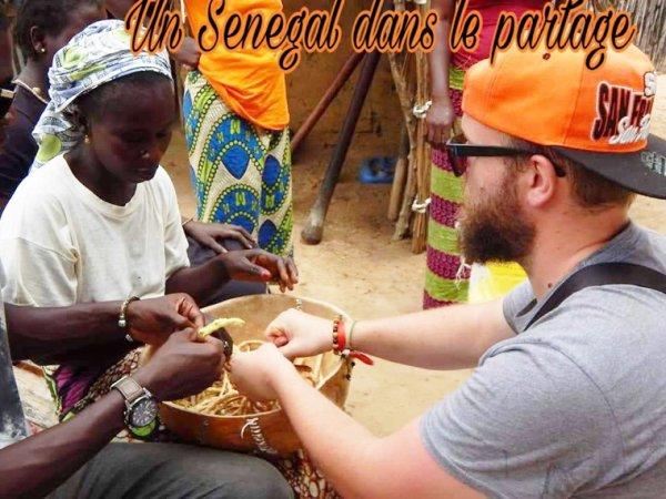 Senegal Excursions: voyagez en bonne compagnie