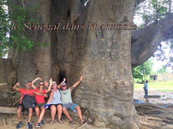 Nos excursions au Départ de Saly hotel palm beach, decouvrez les meilleurs visites à faire au départ de saly