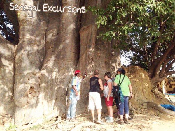 Une journée découverte brousse et village avec nos amis du royal baobab horizon. Remplie d'émotion et solidarité.